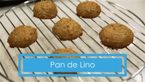 Receta de pan de lino en vídeo