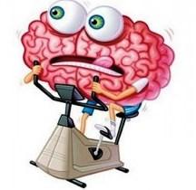 Efectos de la cetosis en el cerebro
