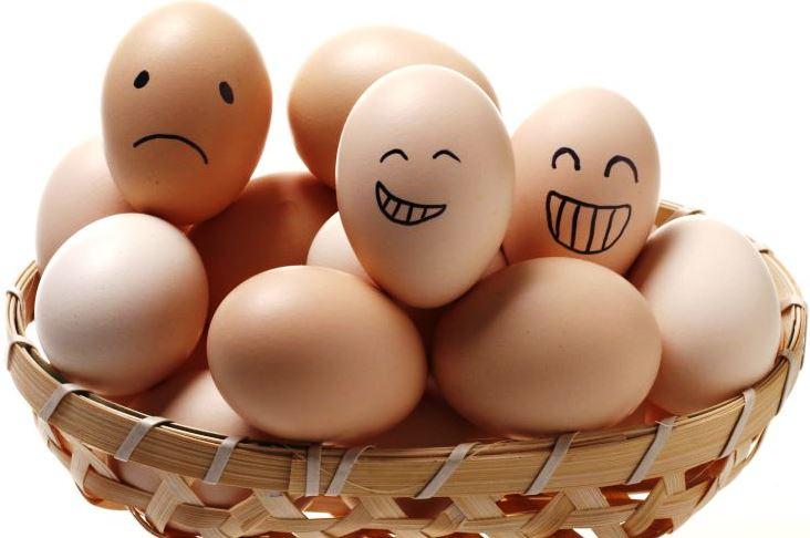 Cuajada danone protein as para bajar de peso