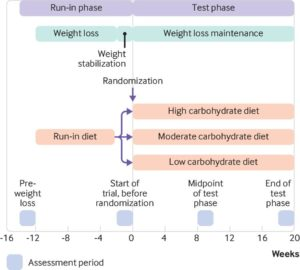 Estudio BMJ en dietas lowcarb